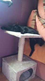 Jenna weisst was relaxen heisst :)