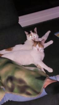 Susi und Joselyn zusammen